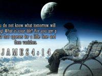 James 4 Verse 14 ESV