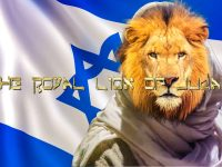 The Lion Of Judah With Graphic