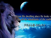 Psalm 33 Verse 14 NAS