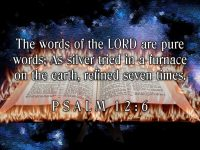 Psalm 12 Verse 6 NAS Bible
