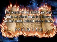 Psalm 12 Verse 6 NAS Torah