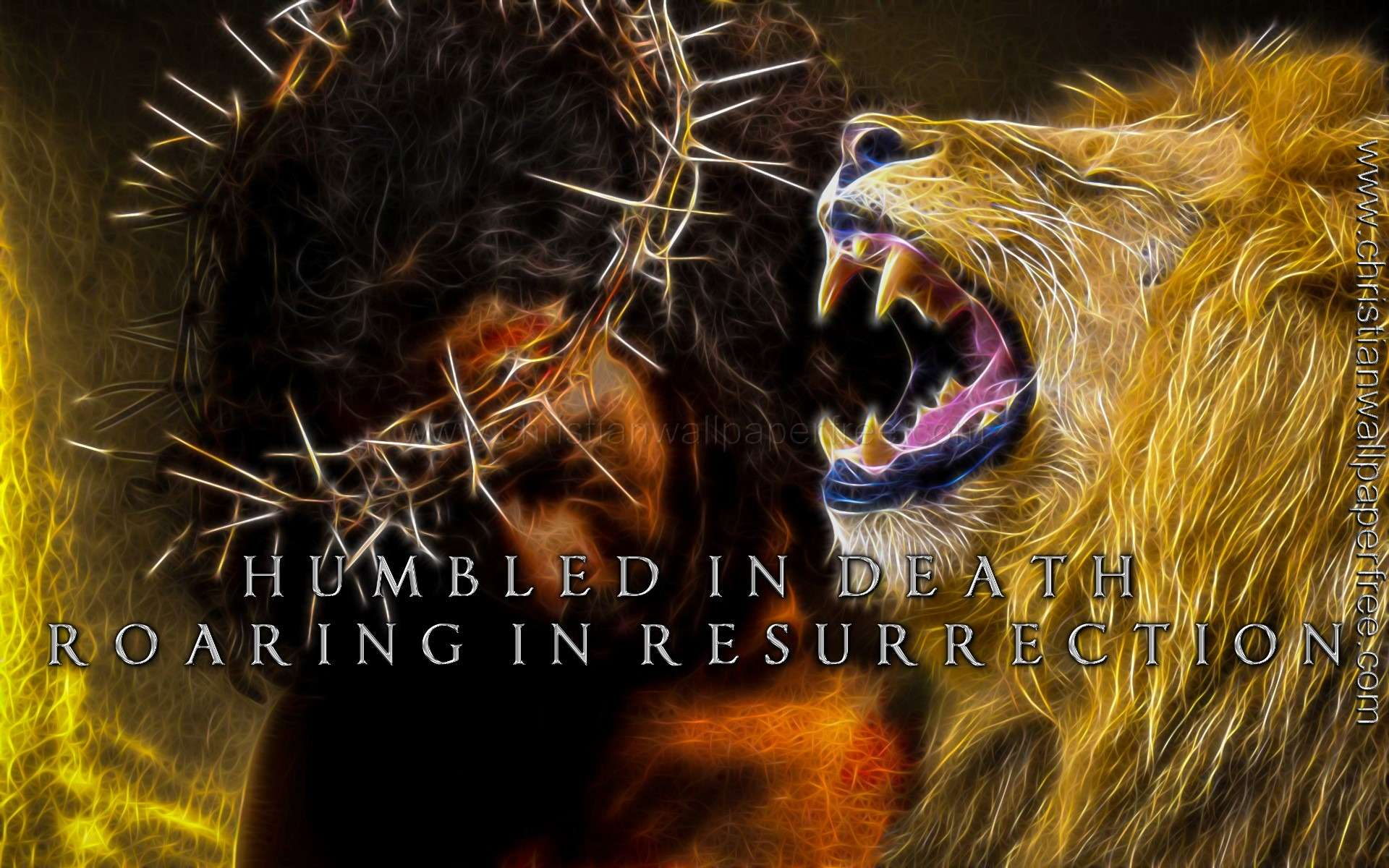 Humbled in Death Roaring in Resurrection